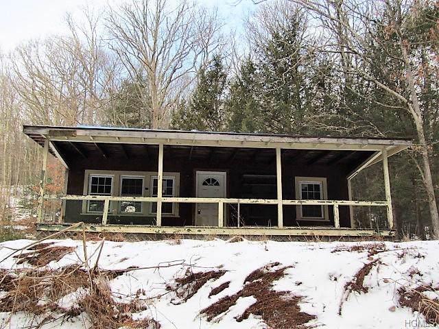 631 Pine Kill Road, Wurtsboro, NY 12790 (MLS #6008884) :: The McGovern Caplicki Team