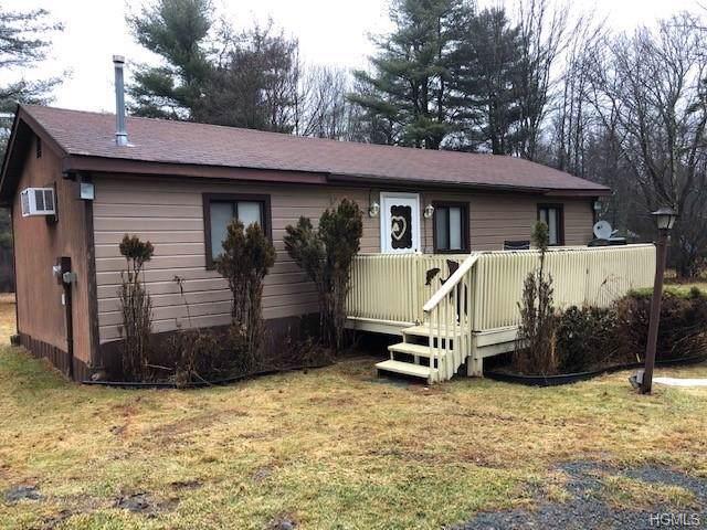 113 Haddock Road, Monticello, NY 12701 (MLS #6008957) :: Cronin & Company Real Estate