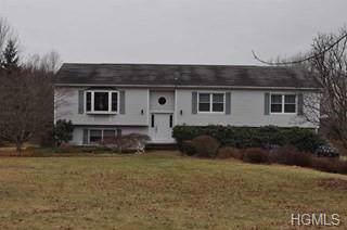 2706 Pleasant Ridge Road, Poughquag, NY 12570 (MLS #6009696) :: William Raveis Baer & McIntosh