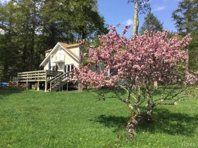 89 Camp Road, Wawarsing, NY 12428 (MLS #H6010347) :: Cronin & Company Real Estate