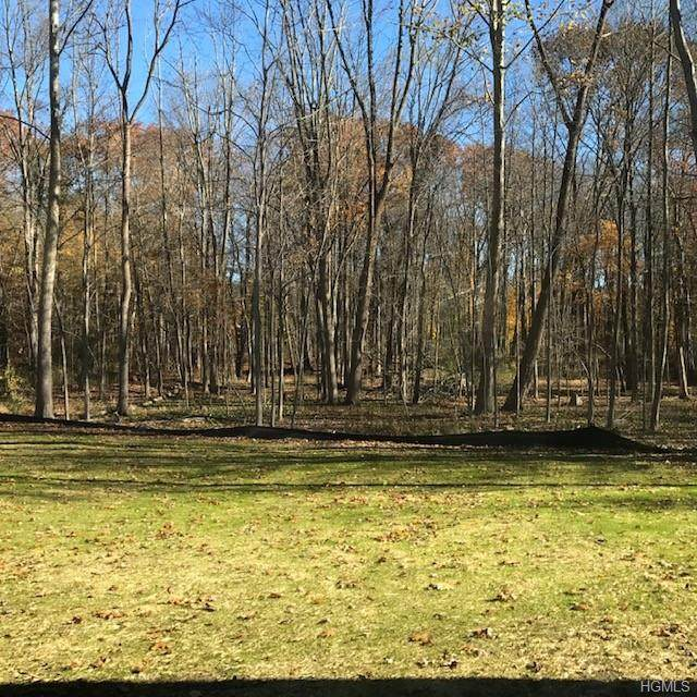 Brookside Avenue, Yorktown Heights, NY 10598 (MLS #6011826) :: William Raveis Legends Realty Group