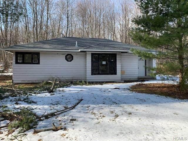 159 Meyerhoff Road, Hurleyville, NY 12747 (MLS #6014856) :: Cronin & Company Real Estate
