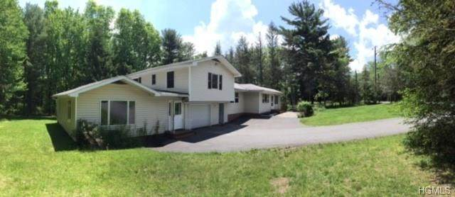 446 High Road, Glen Spey, NY 12737 (MLS #6018233) :: William Raveis Baer & McIntosh