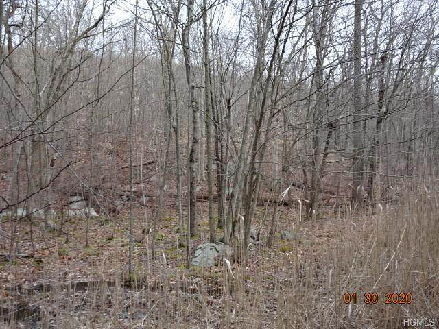 43 Torne Road, Sloatsburg, NY 10974 (MLS #6018283) :: Mark Boyland Real Estate Team