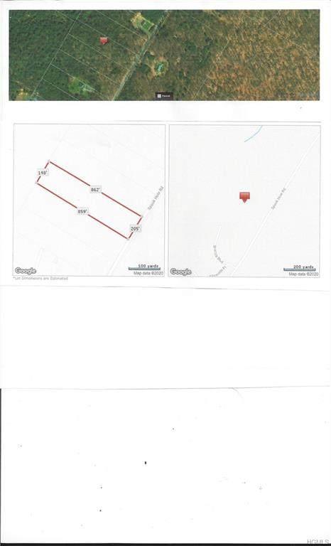 TBD Spook Hole Road, Wawarsing, NY 12489 (MLS #6018894) :: William Raveis Baer & McIntosh