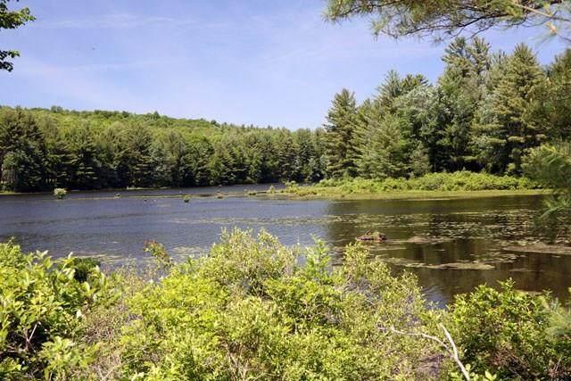 (3.5) Swamp Pond Road - Photo 1