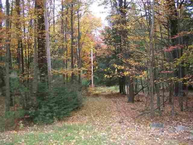 00 Rt. 42, Forestburgh, NY 12777 (MLS #H4217862) :: William Raveis Baer & McIntosh