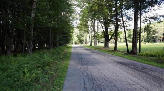 10.13 Perry Road Tr 72, Bethel, NY 12720 (MLS #H4704807) :: William Raveis Baer & McIntosh