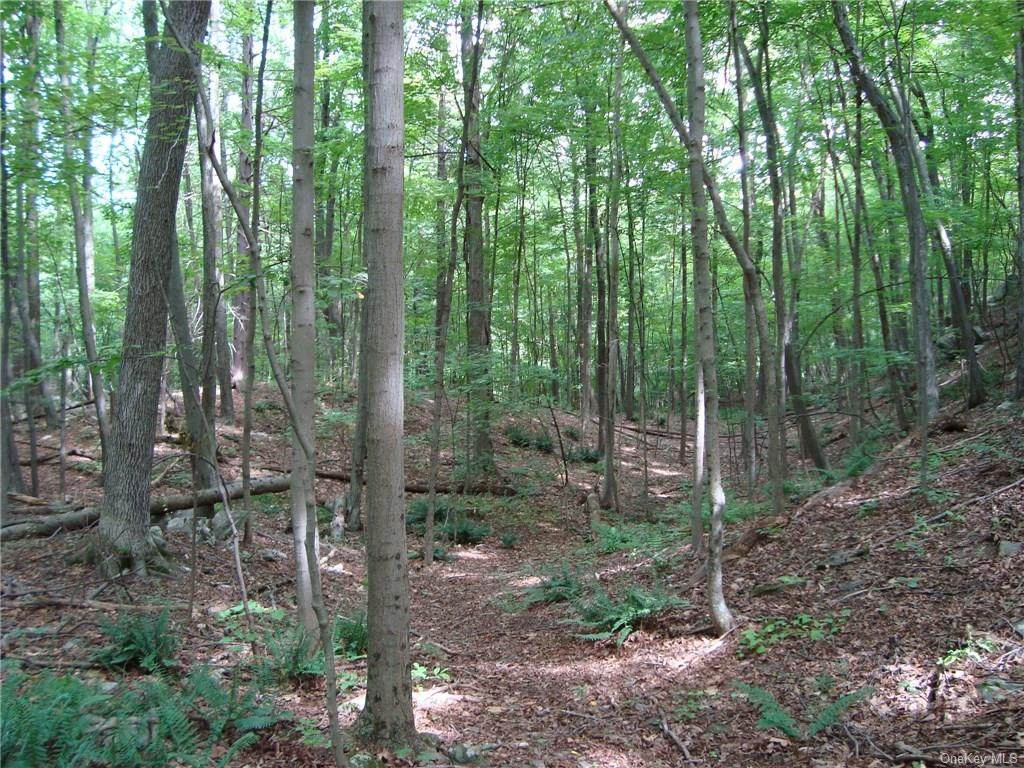 11 Deer Hill Road - Photo 1