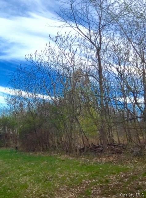 7 Eagle Wood Vista Ln - Photo 1