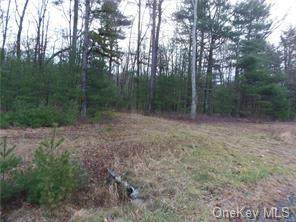 1474  Lot#5 Route 42, Forestburgh, NY 12777 (MLS #H4903382) :: Frank Schiavone with William Raveis Real Estate
