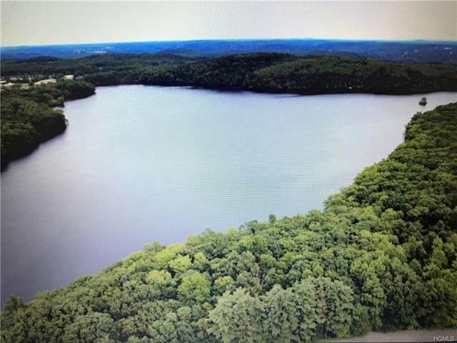 Kenoza Trail, Delaware, NY 12723 (MLS #H4910856) :: William Raveis Baer & McIntosh