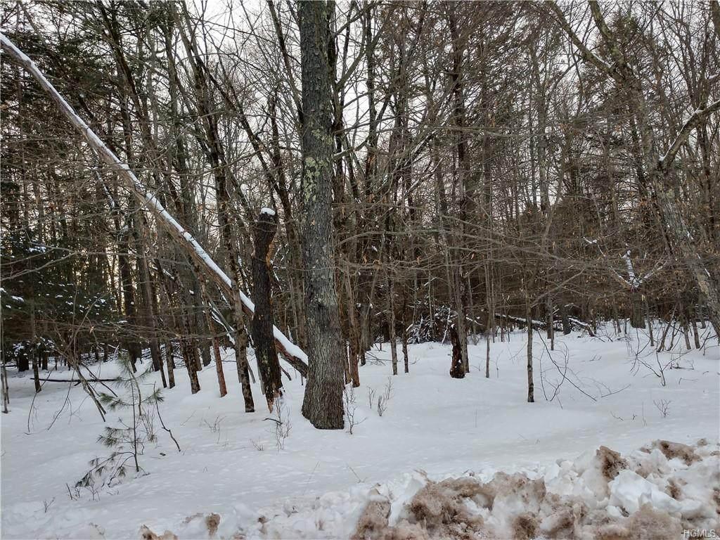 392 Pine Grove Road Tr 45 - Photo 1