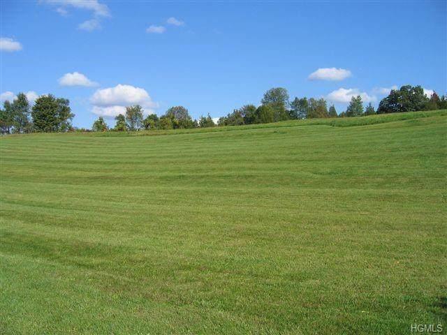 Stebbins Farm Road - Photo 1