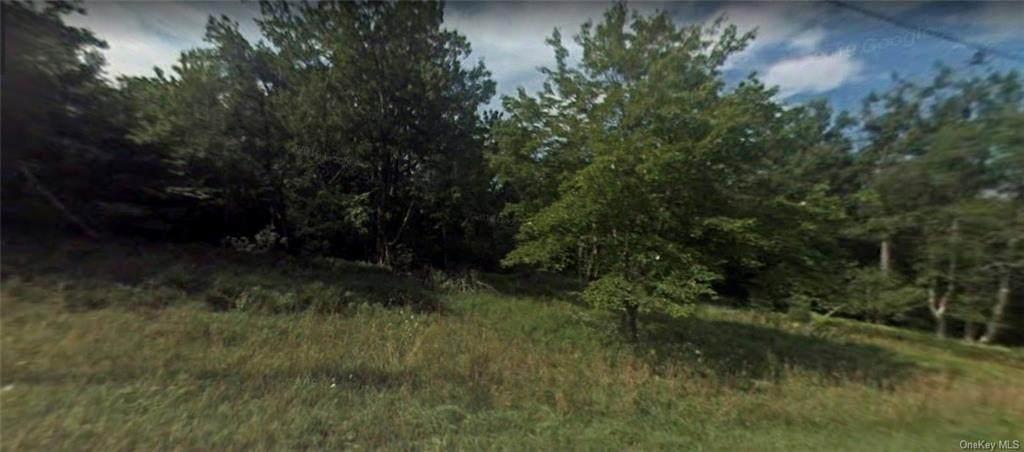 Lot #1 Mount Vernon Road - Photo 1