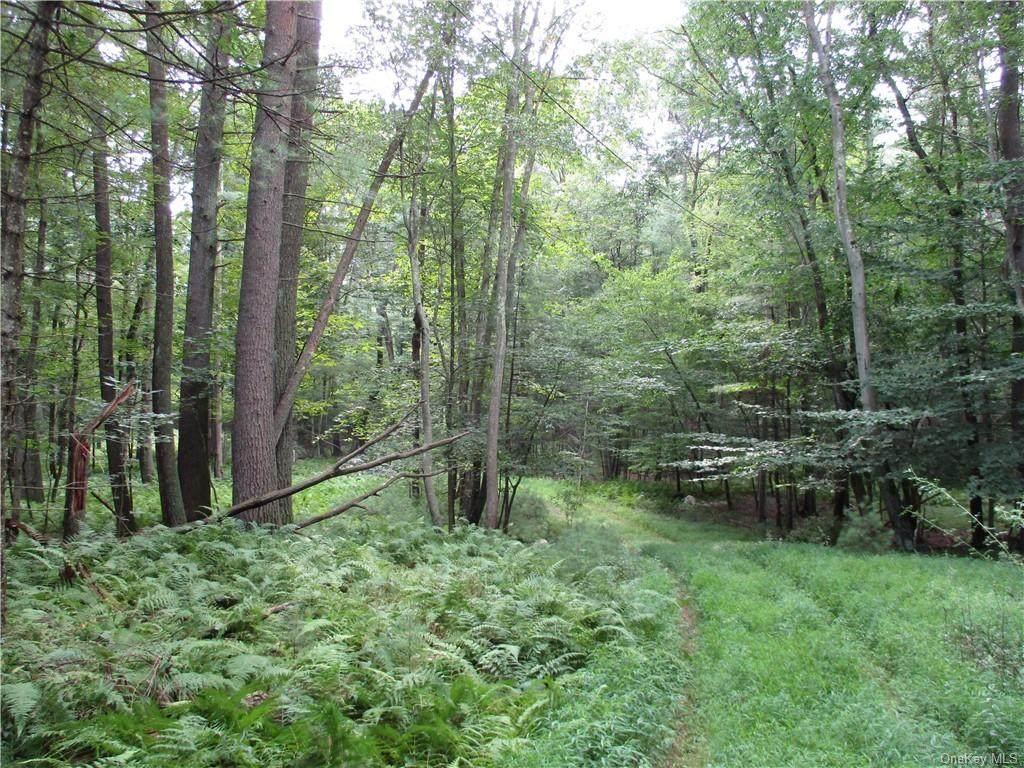 1563 Us Route 209 - Photo 1