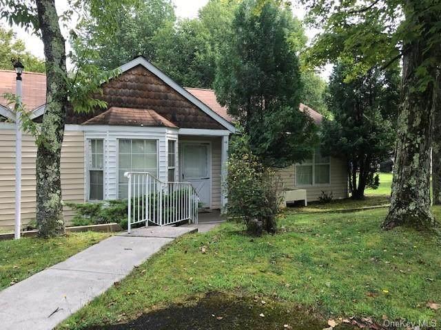 48 Hidden Ridge Terrace, Monticello, NY 12701 (MLS #H5032903) :: Nicole Burke, MBA | Charles Rutenberg Realty