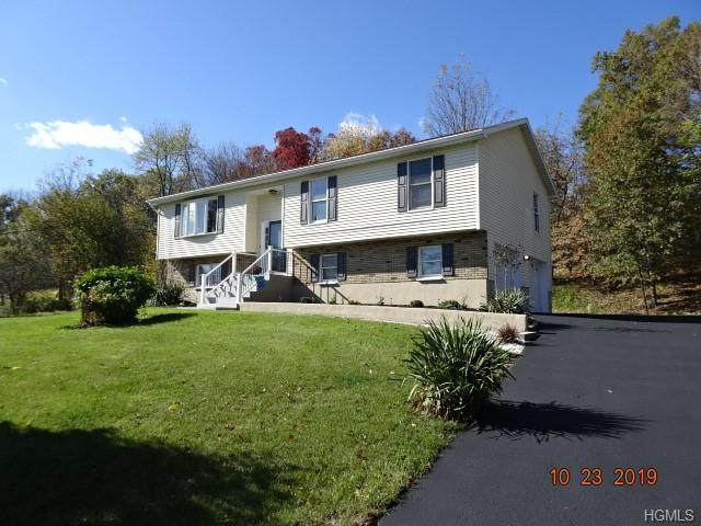 475 Lower Road, Minisink, NY 10998 (MLS #H5113126) :: Cronin & Company Real Estate