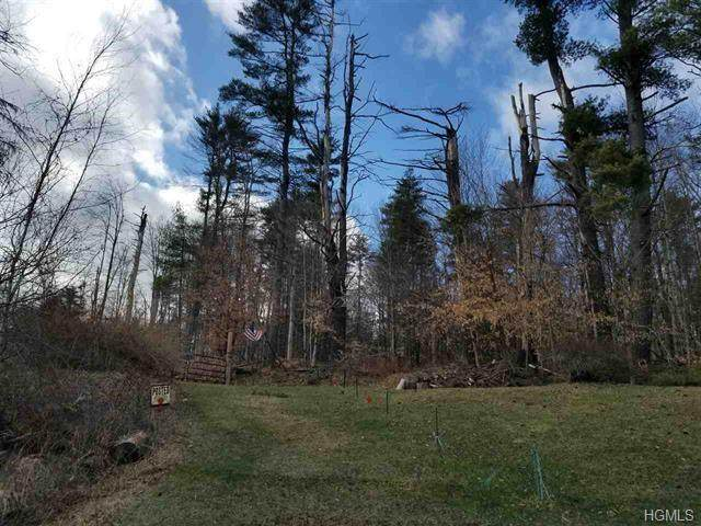 1192 County Road 115, Cochecton, NY 12726 (MLS #H6005467) :: Signature Premier Properties