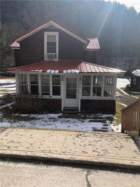 450 E Front Street, Hancock, NY 13783 (MLS #H6010052) :: William Raveis Legends Realty Group