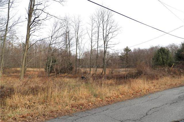 Painter Hill Road, Mamakating, NY 12790 (MLS #H6010071) :: William Raveis Baer & McIntosh