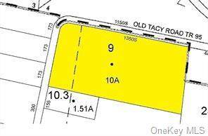 Lot 9 Old Tacy Road - Photo 1