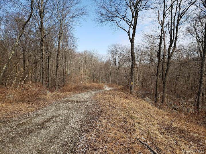 White Rock Road - Photo 1