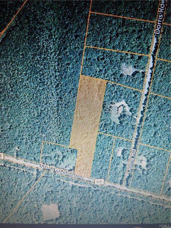 Hartwood Road, Forestburgh, NY 12777 (MLS #H6024988) :: Cronin & Company Real Estate