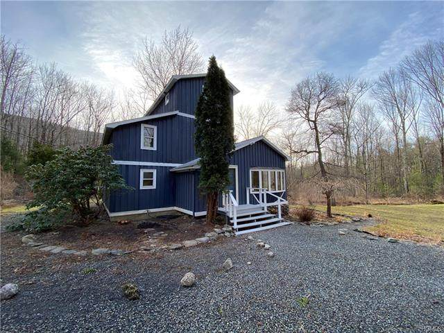26 Nickelsey Road, Olive, NY 12481 (MLS #H6025542) :: Cronin & Company Real Estate
