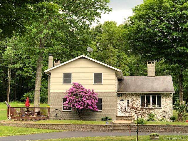 355 Woods Court, Ancram, NY 12503 (MLS #H6027735) :: William Raveis Legends Realty Group