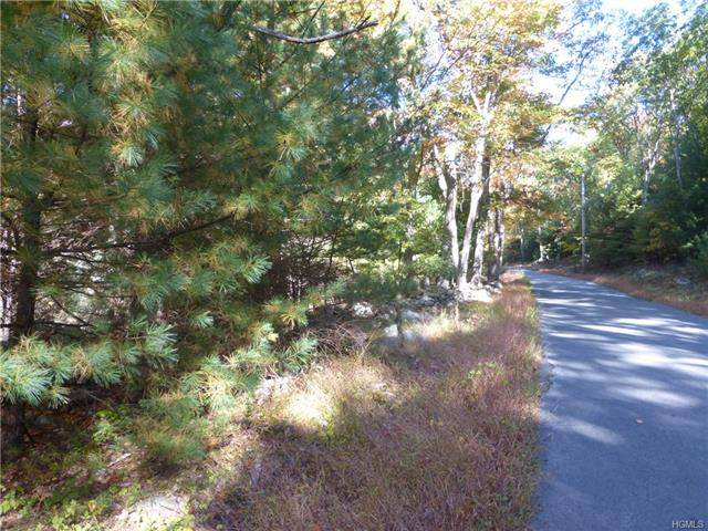 Upper Pine Kill Road, Mamakating, NY 12790 (MLS #H6029042) :: Marciano Team at Keller Williams NY Realty