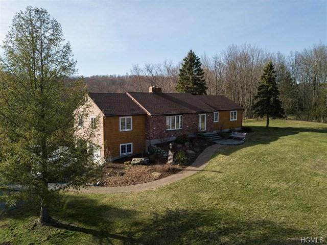 125 Smith Road, Pleasant Valley, NY 12569 (MLS #H6029102) :: Signature Premier Properties
