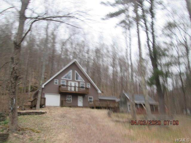 503 Bouchouxville Road, Hancock, NY 13783 (MLS #H6031516) :: William Raveis Legends Realty Group