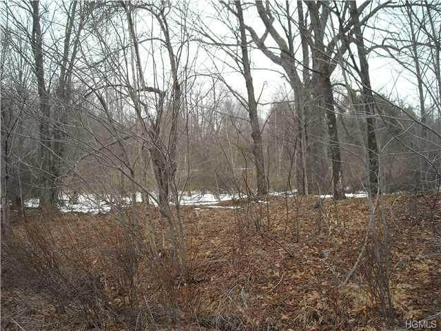 Upper Ferndale Road, Liberty Town, NY 12754 (MLS #H6032153) :: Signature Premier Properties