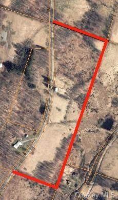 Biffar Road, Hancock, NY 13783 (MLS #H6038280) :: Signature Premier Properties