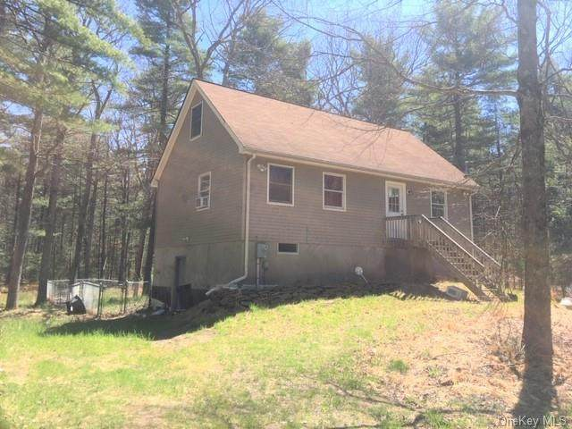 90 Rowley Road, Lumberland, NY 12732 (MLS #H6039283) :: William Raveis Legends Realty Group