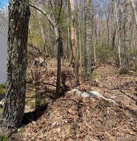 Longspur Trail, Mamakating, NY 12790 (MLS #H6039411) :: Cronin & Company Real Estate