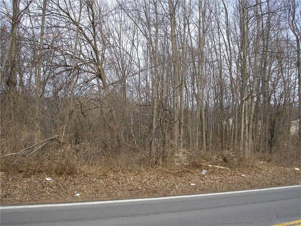 85 Silverlake Scotchtown Road - Photo 1