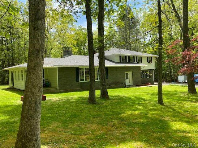 148 Upper Brook Road, Deerpark, NY 12780 (MLS #H6041423) :: William Raveis Legends Realty Group