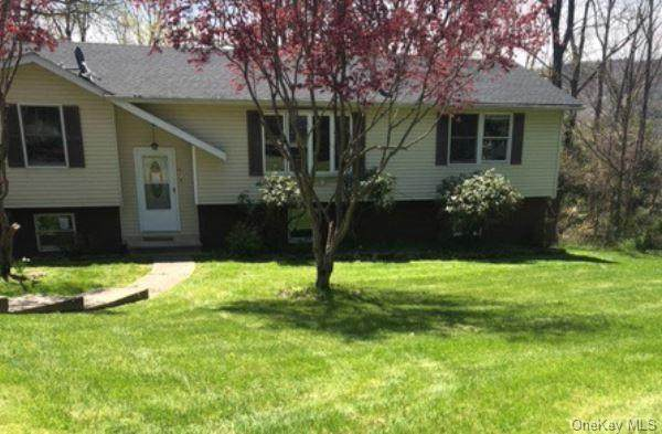 111 Woodside, Dover, NY 12522 (MLS #H6041558) :: The Home Team