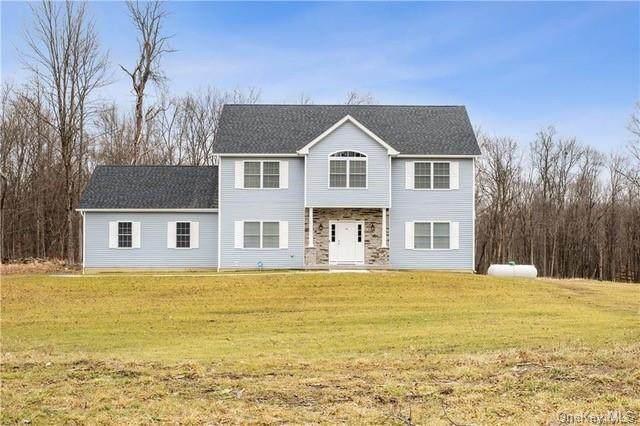 TBD LOT 15 Bert Mccord, Pine Bush, NY 12566 (MLS #H6041916) :: Frank Schiavone with William Raveis Real Estate