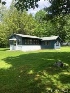 82 Springbrook Road, Greenville, NY 12771 (MLS #H6042230) :: Signature Premier Properties