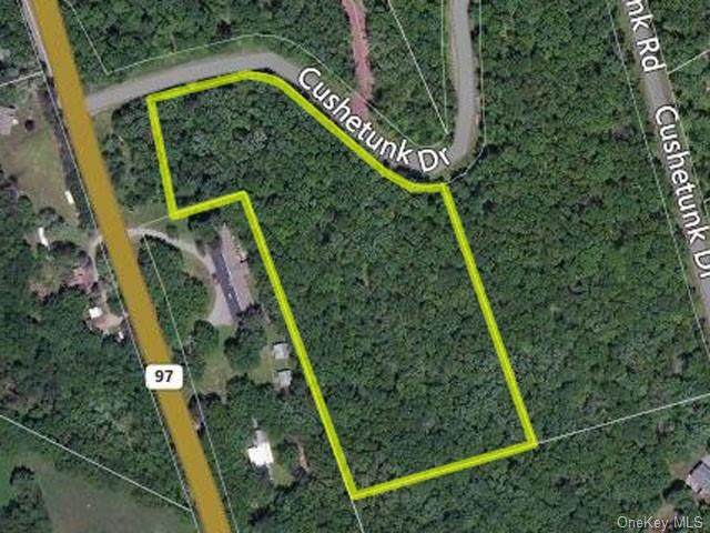 Cushetunk Drive, Cochecton, NY 12726 (MLS #H6042288) :: Mark Seiden Real Estate Team