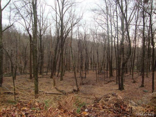 Barger/Posey, Putnam Valley, NY 10579 (MLS #H6042530) :: Mark Boyland Real Estate Team