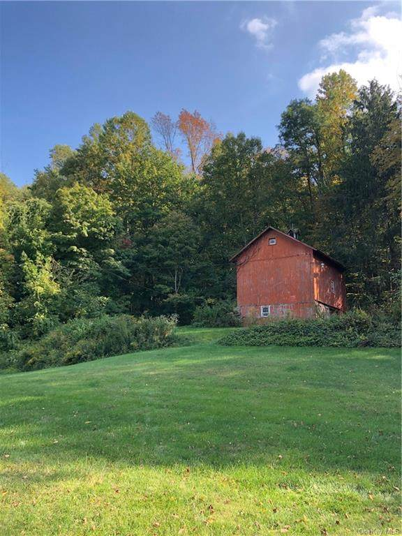 37 Route 164, Patterson, NY 12563 (MLS #H6047758) :: William Raveis Baer & McIntosh