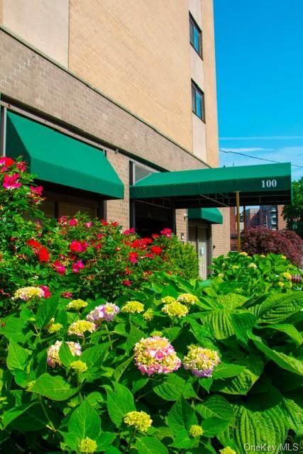 100 E Hartsdale Avenue Mlw, Greenburgh, NY 10530 (MLS #H6048358) :: William Raveis Baer & McIntosh