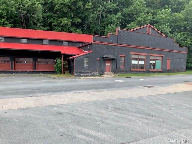 100 Mill, Liberty Town, NY 12754 (MLS #H6049176) :: William Raveis Baer & McIntosh