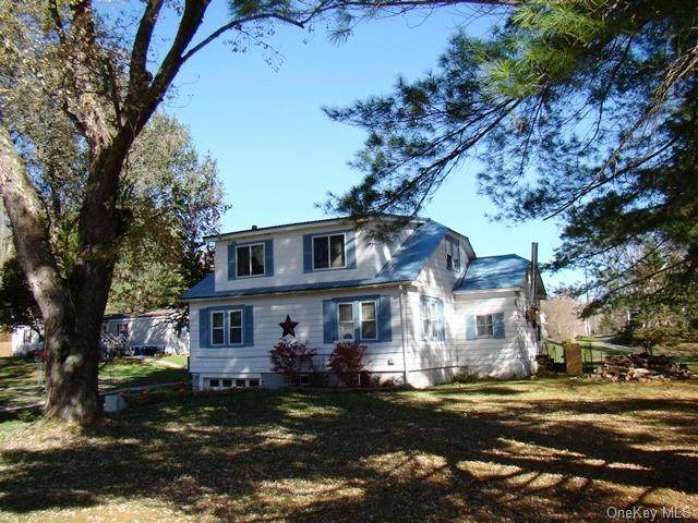 548 State Route 52A, Delaware, NY 12723 (MLS #H6049817) :: William Raveis Baer & McIntosh