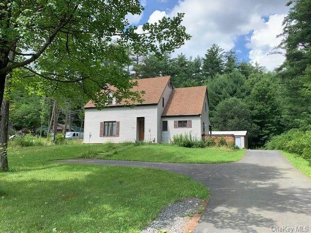 1070 State Route 52, Fallsburg, NY 12759 (MLS #H6053742) :: Marciano Team at Keller Williams NY Realty