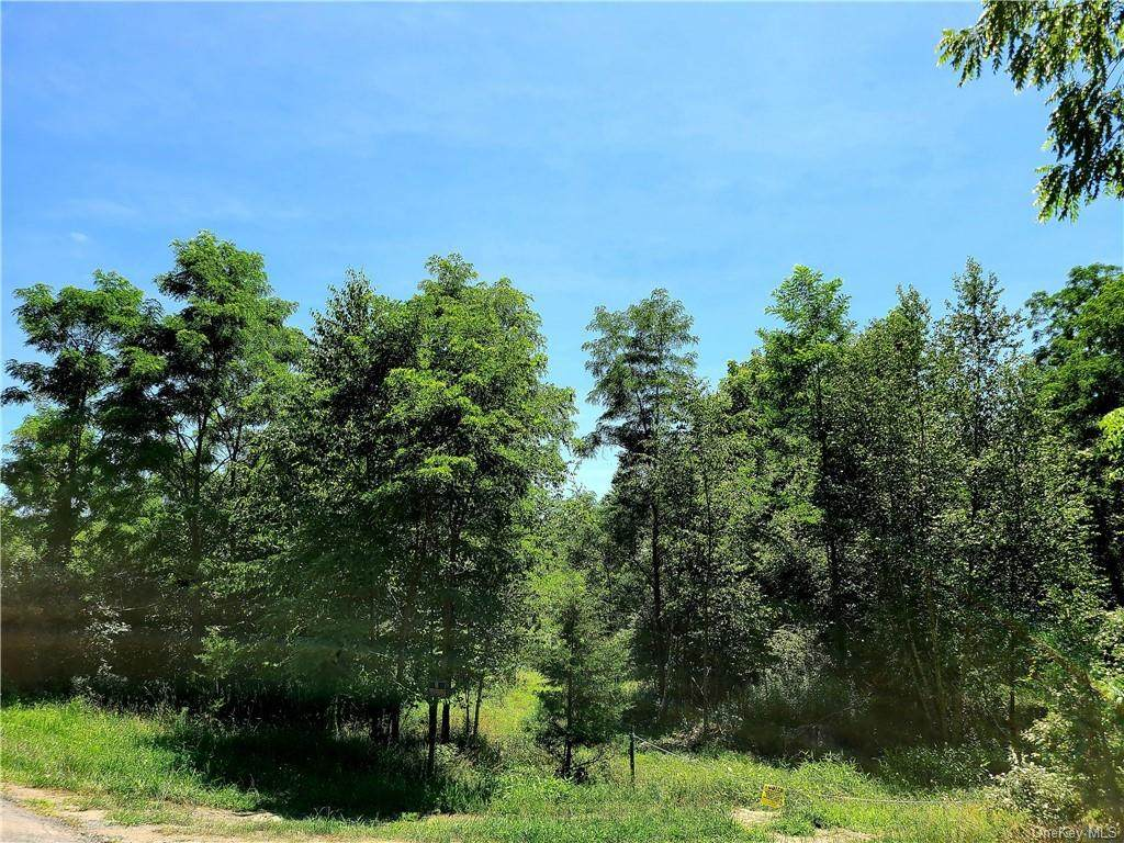 Meyer Rd/Pine Lane - Photo 1